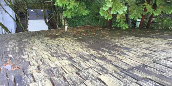 Reliance Roof Pros | Maintaining Cedar Roofs