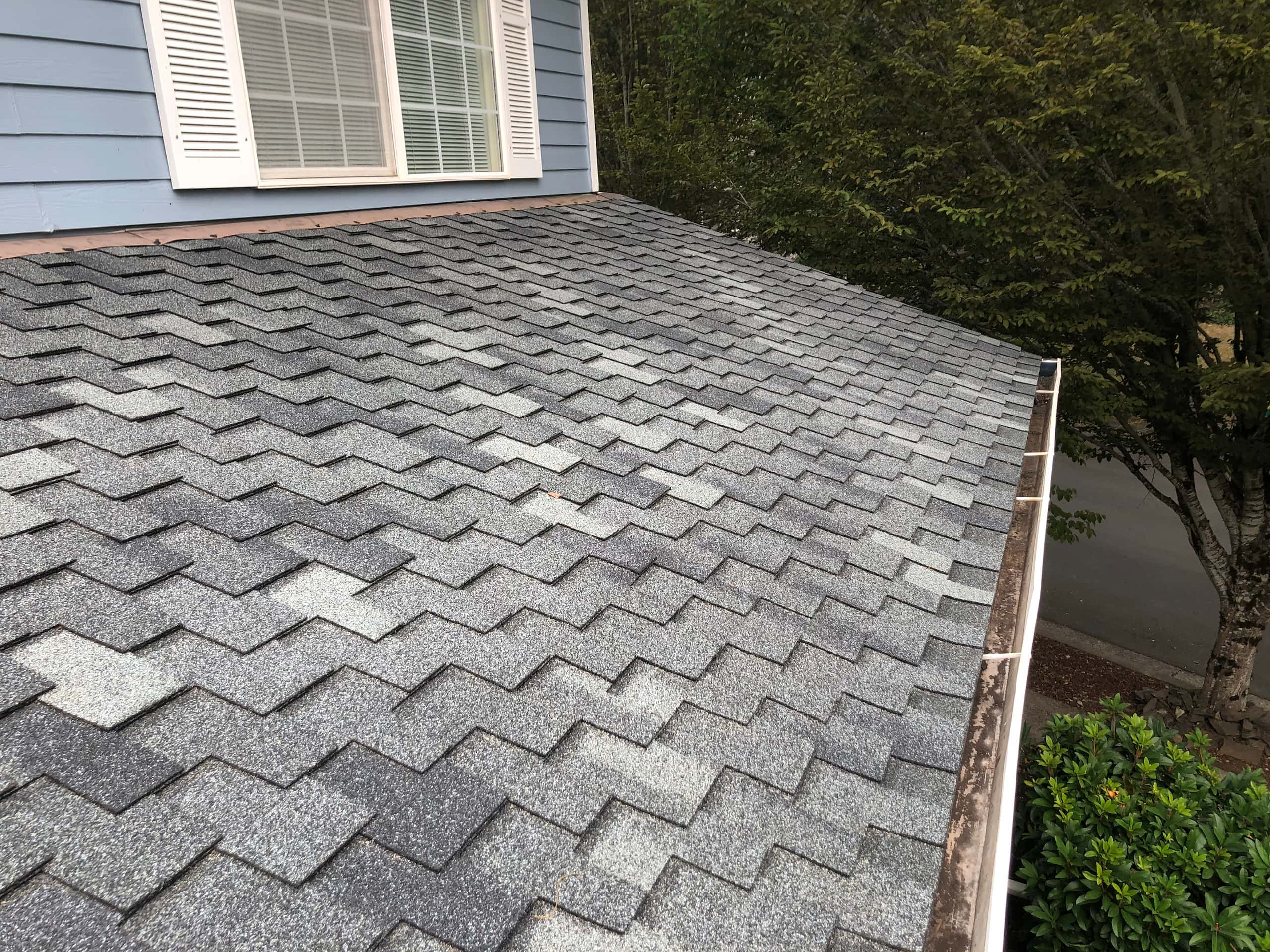 Reliance Roof Pros LLC | Beaverton | New Roof | Pabco Paramount AD | Pewter Gray | Gutter