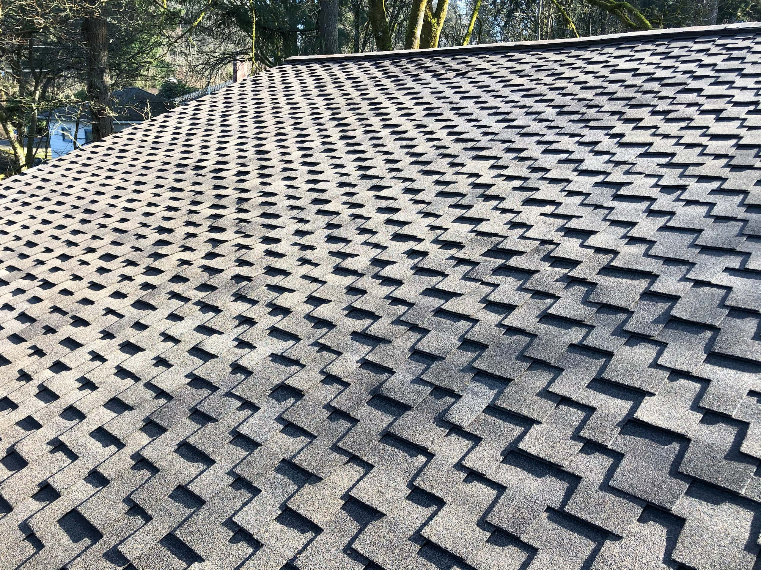 Reliance Roof Pros | Lake Oswego | New Roof | Pabco Paramount Algae Defender Oakwood | Best in Class